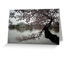 Cherry Blossoms Tidal Basin Jefferson Memorial Greeting Card