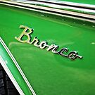 Ford Bronco by Rachel Counts