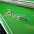 Ford Bronco by rmcbuckeye