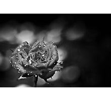 Dark Photographic Print
