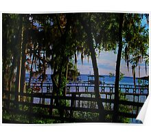 St Johns River Poster