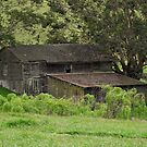 OLD BARN by David Akers