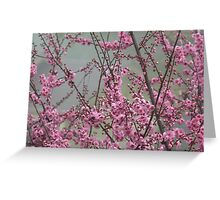 Blossom in the mist Greeting Card
