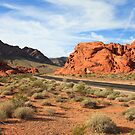 Valley of Fire by Nickolay Stanev