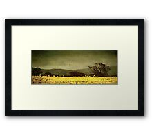 A splendid crop Framed Print
