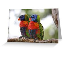 True Mates in the Rainforest Greeting Card