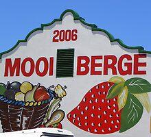 Mooiberge Padstal ~ Farm Stall by Pieta Pieterse