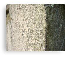 Stone Nine Canvas Print