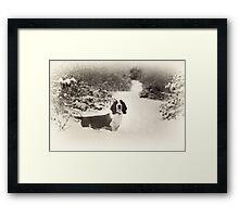 My Bassett Nelson Framed Print