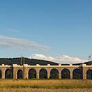 Jezernice Viaduct, Emperor Ferdinand Northern Railway by Petr Svarc