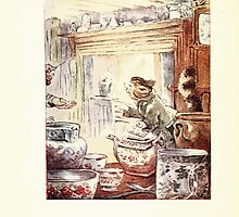 The Tailor of Gloucester Beatrix Potter 1903 0048 Cat In Fine Clothign by wetdryvac