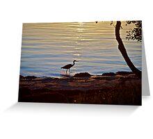 Sunset silhouette 2 - Banksia Beach, Bribie Island Greeting Card