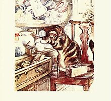 The Tailor of Gloucester Beatrix Potter 1903 0027 Cat In Drawers by wetdryvac