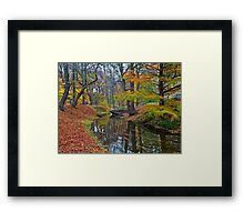 Silence, only the leaves float on the water Framed Print
