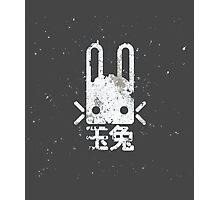 Jade Rabbit | Destiny Photographic Print