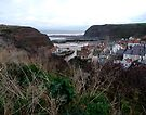 Staithes from Cowbar Nab by Sue Nichol