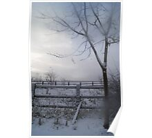 misty tree in winter Poster