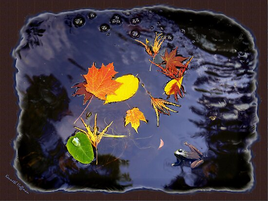 Leaves in Water by Kenneth Hoffman