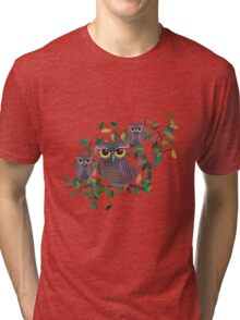 Owls on a Branch Tri-blend T-Shirt