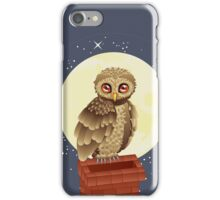 Owl and Moon 2 iPhone Case/Skin