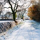 Winter on a country road by dunawori