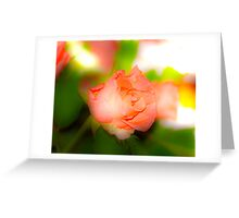 a single rose for you Greeting Card