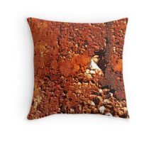 A New Year's resolution? Throw Pillow