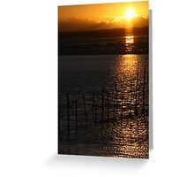 Solway Nets Greeting Card