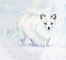 Arctic Fox by clarehenry