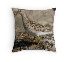 The Pectoral Sandpiper Throw Pillow