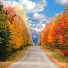 ROAD TO AUTUMN by TDSwhite