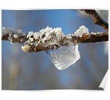 Frozen Water Droplet  Poster