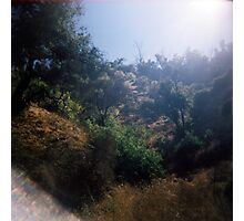 Light in the Valley, Griffith Park, August 14 2010 Photographic Print