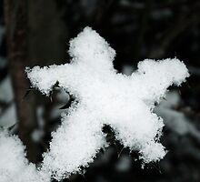 Snow Star by Emma Wright