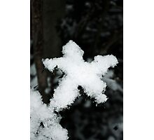Snow Star Photographic Print
