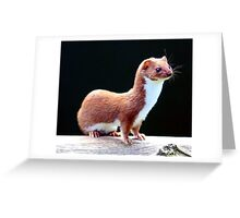 Special Weasel Greeting Card