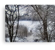 FRAMING THE SNOW. Canvas Print