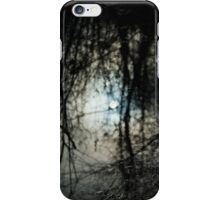 Winter Reflection iPhone Case/Skin
