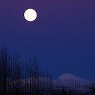 Moonlit Iceland by Ritva Ikonen