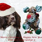 Merry Christmas from George  by Sheila Laurens