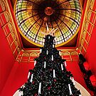 Merry Christmas All by David Haworth