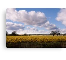 Majestic clouds over autumn vineyard Canvas Print
