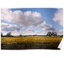 Majestic clouds over autumn vineyard Poster