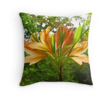 Rhododendron flower bloom with texture. Throw Pillow