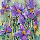 Wild Iris by bevmorgan