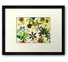 Floral May Framed Print