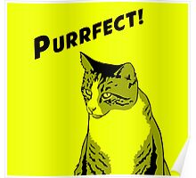 Purrfect! Poster