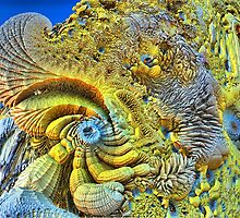 Corals of Saggus V by Bunny Clarke
