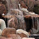 Freezing Waterfall by Loree McComb