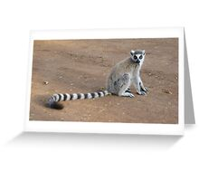 Adorable Lemur Greeting Card